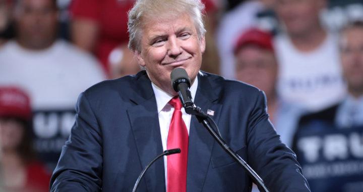 Trump propone quitar ciudadanía estadounidense a hijos de inmigrantes.